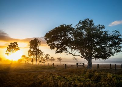 Gympie Region Brand Story - image sunrise on farm
