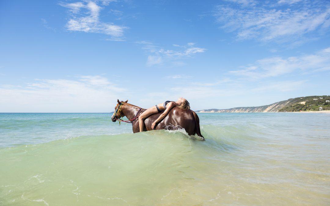 Rainbow Beach Horse Rides