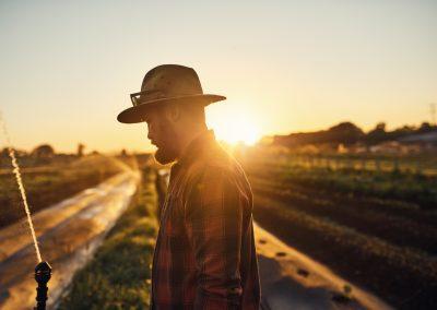 Gympie Region Brand Story - image farmer
